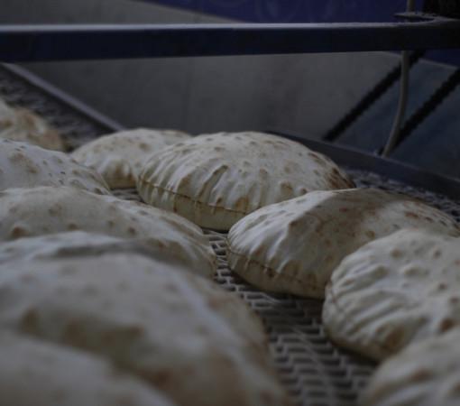 مشروع الخبز